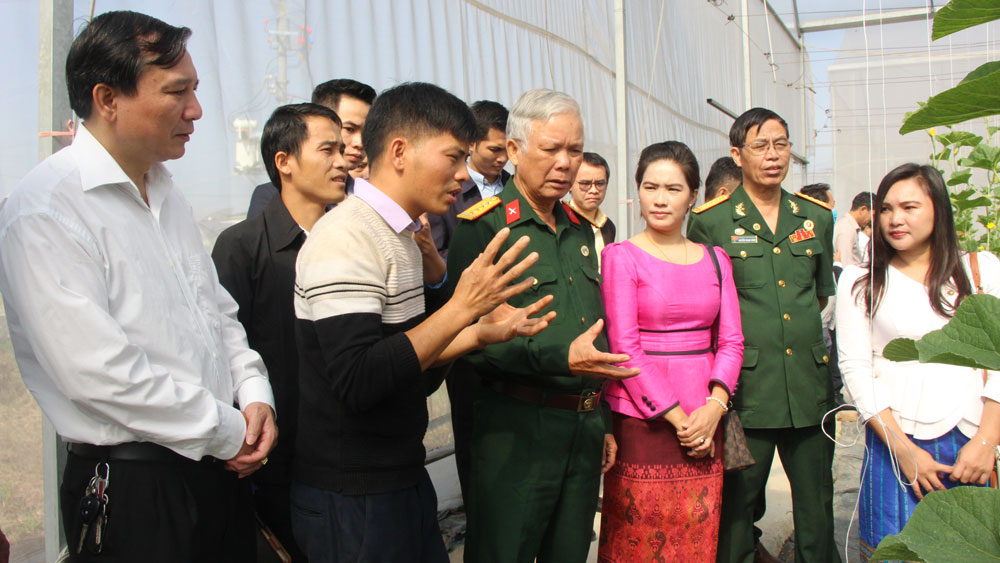 Bac Giang province,  Vietnam - Laos friendship, Union of Friendship Organizations, practical activities,  traditional relation, high-tech farming model