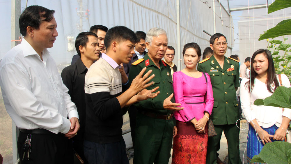 Bac Giang province, people-to-people diplomacy, World Peace Committee, Vietnam Union of Friendship Organizations, VUFO, socio-economic development,