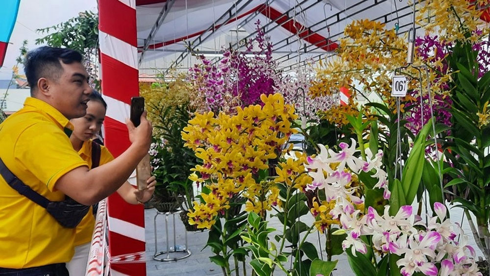 National Orchid Festival, 800 artisans, Various types of orchids, orchid clubs,  most beautiful orchid baskets, outstanding students, scholarship