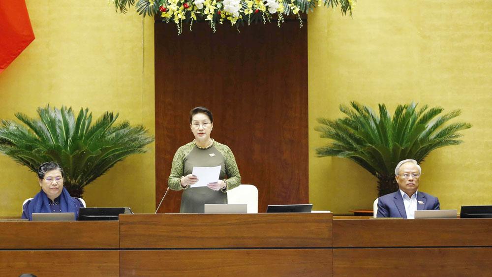 Chủ tịch Quốc hội Nguyễn Kim Ngân: Tạo động lực, khí thế mới để đất nước tiếp tục phát triển bền vững