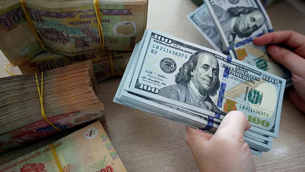Securities firm expects Vietnam currency to remain strong in 2021