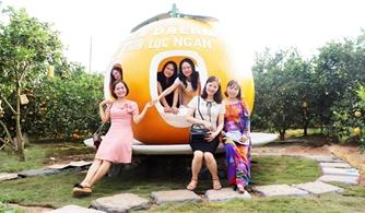 Lục Ngạn: Đắp mô hình quả cam khổng lồ ngay tại vườn, thu hút du khách