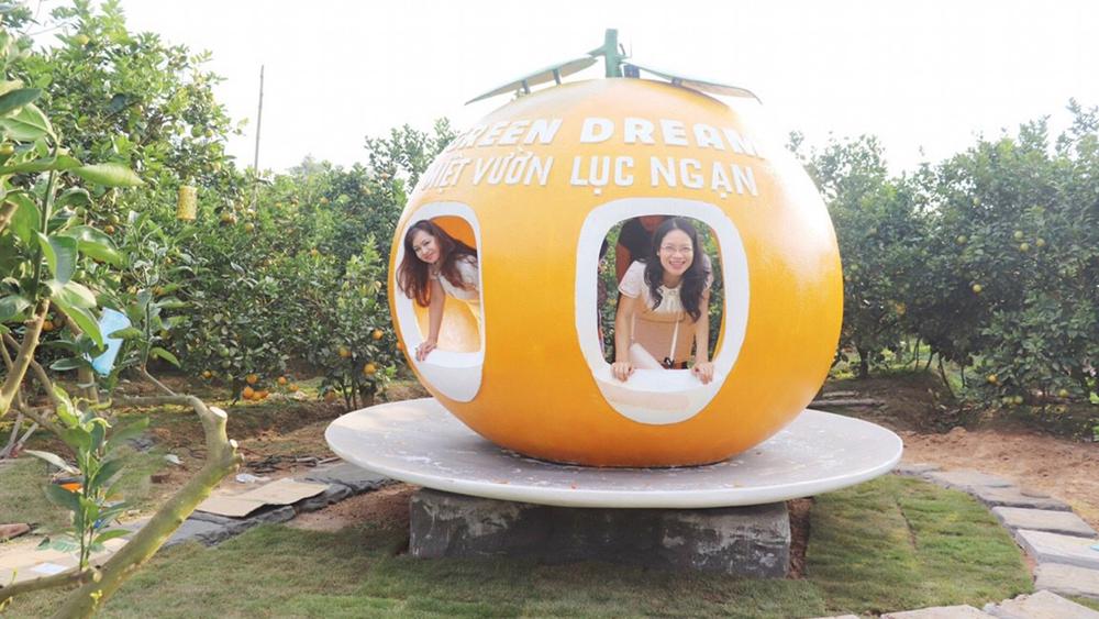 Lục Ngạn, Đắp mô hình, quả cam, khổng lồ, ngay tại vườn, hút khách du lịch, Bắc Giang, Thanh Hải