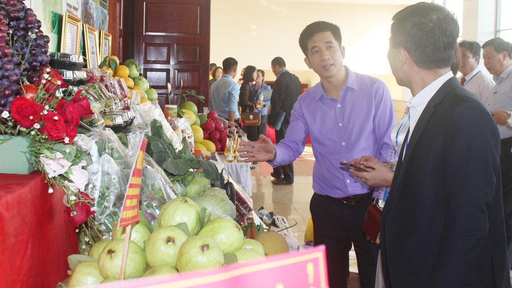 Linkage in production, farm produce consumption, year end season, Bac Giang province, Lunar New Year Festival, safe farm produce