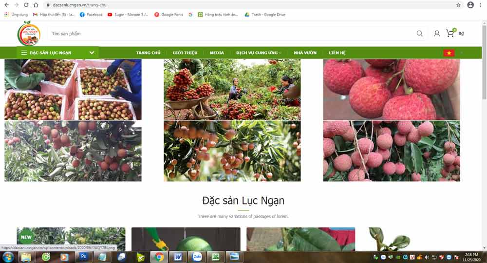 Many customers buy Luc Ngan orange and pomelo on electronic trading platform