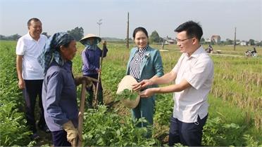 Phát triển đảng viên mới ở Lạng Giang: Nhiều biện pháp tạo nguồn