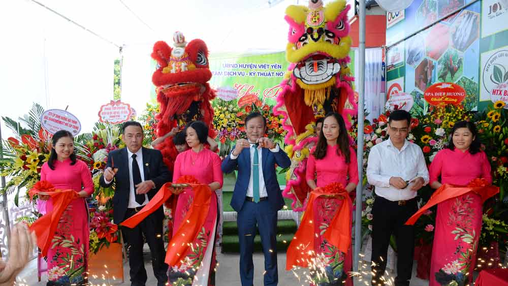 Viet Yen district, opens store, introduce and showcase, OCOP products, Bac Giang province, One commune One product