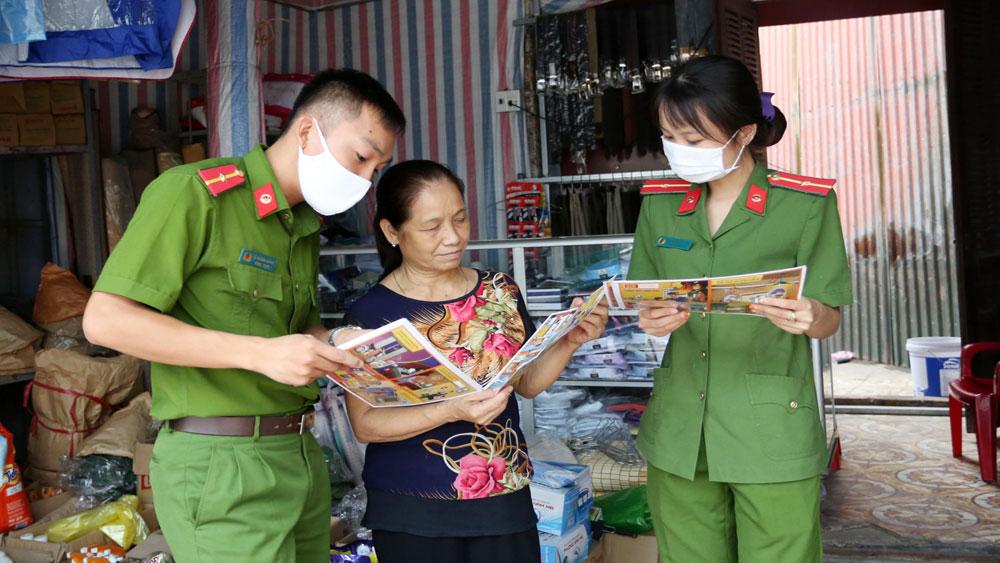 Phong trào toàn dân bảo vệ an ninh tổ quốc, Bắc Giang, tội phạm