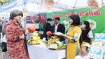 Bac Giang attends International Food Festival