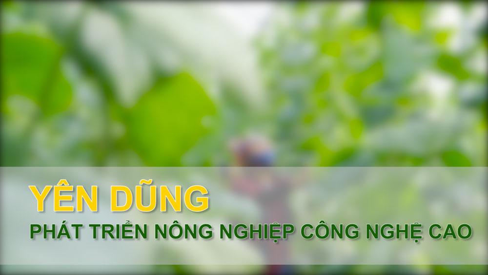 Yên Dũng phát triển nông nghiệp công nghệ cao