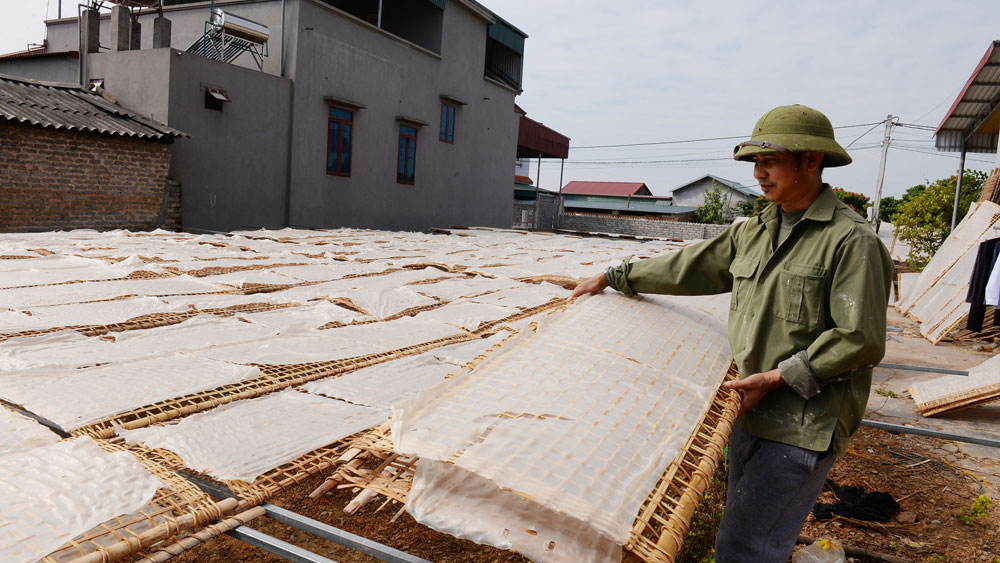 Hội sản xuất và tiêu thụ mỳ Chũ - Lục Ngạn: Đa dạng sản phẩm, đẩy mạnh tiêu thụ dịp cuối năm