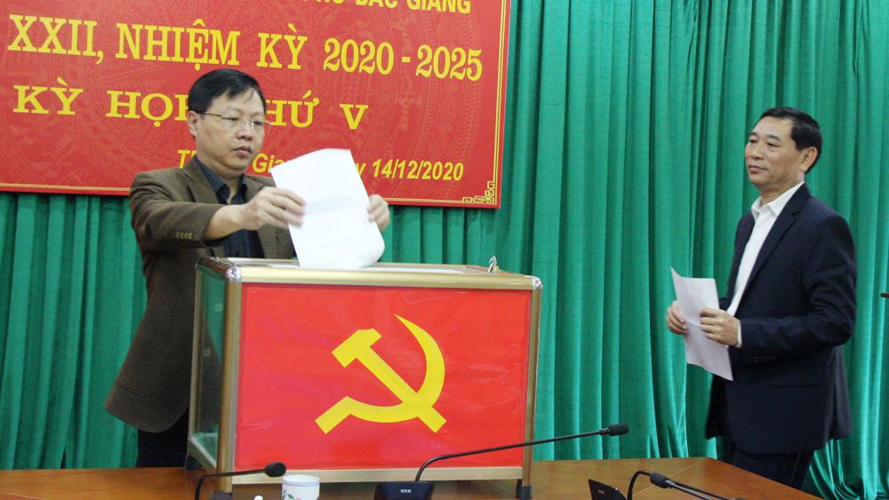 Vũ Trí Hải, Đặng Đình Hoan, Bí thư Thành ủy, Bắc Giang, Chủ tịch UBND TP