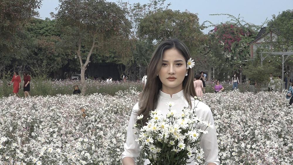 Bắc Giang: Rộn ràng cúc họa mi