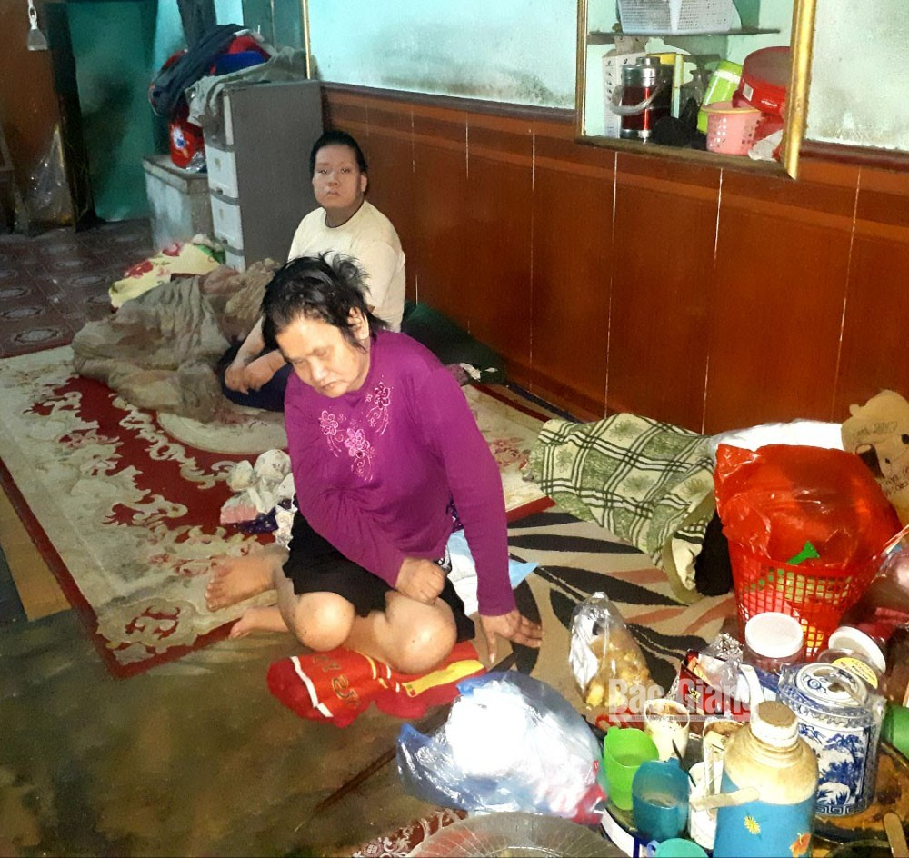 Miserable family, needs help, traffic accident, Bac Giang province, traffic accident, poor family, long-term treatment