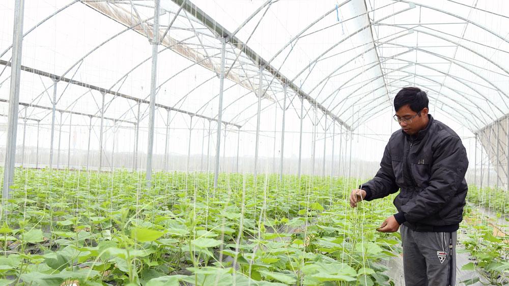 Yên Dũng, Bắc Giang, nghị quyết chuyên đề, phát triển toàn diện