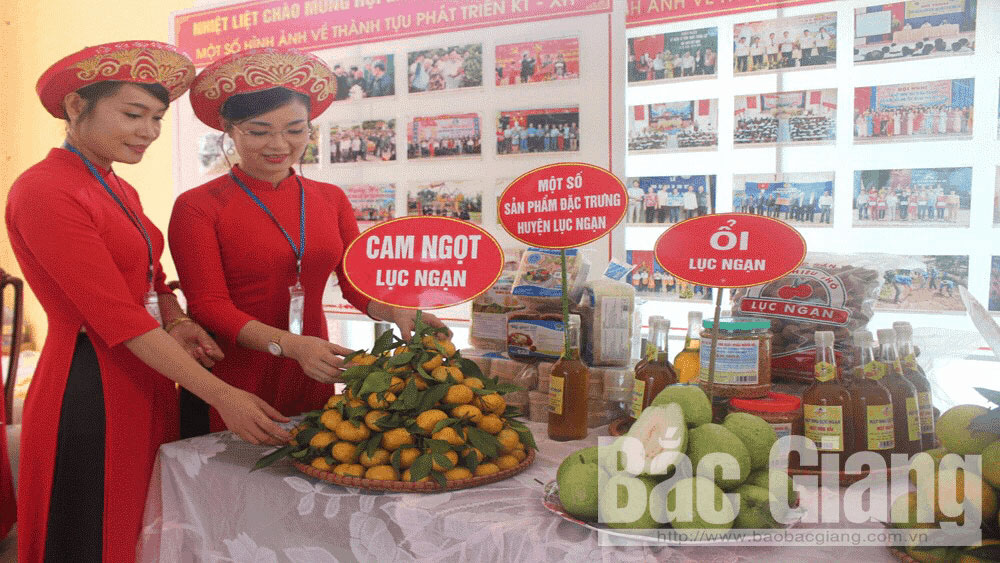 Bac Giang, 1.3 million USD, implementing trade promotion plan