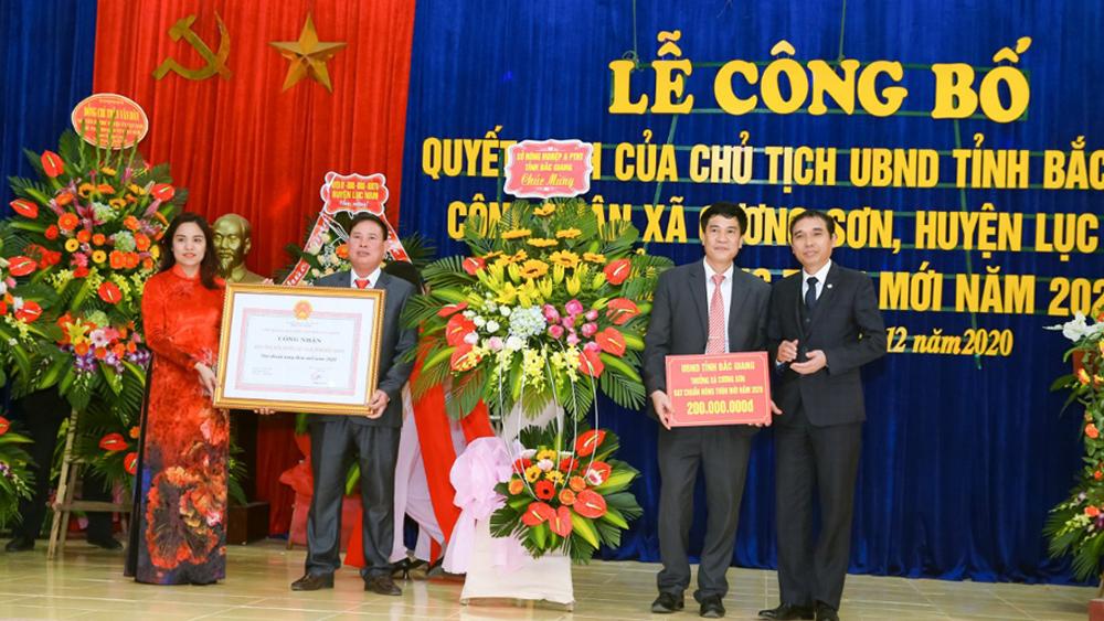 Lục Nam: Xã Cương Sơn đạt chuẩn nông thôn mới