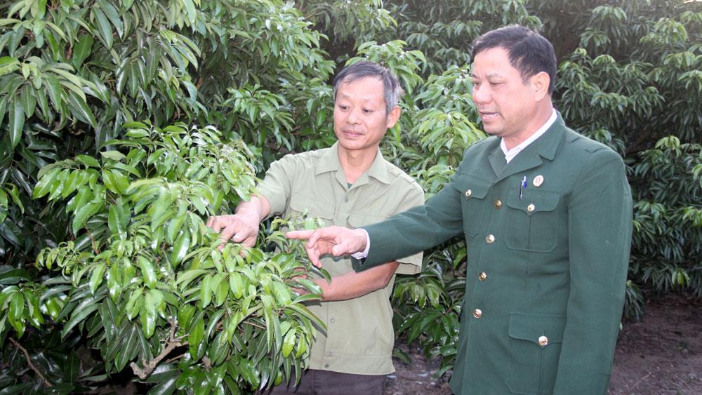 Bắc Giang: Kết nạp hội viên cựu chiến binh vượt kế hoạch
