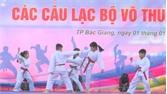 TP Bắc Giang: Những màn biểu diễn võ thuật đẹp mắt