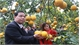 MARD Minister Nguyen Xuan Cuong urges Bac Giang to continue developing fruit trees in 3 groups of products