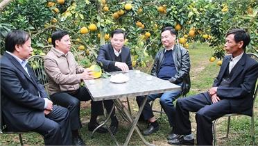"""Bộ trưởng Bộ nông nghiệp và PTNT Nguyễn Xuân Cường: Liên kết chặt chẽ """"4 nhà"""", tăng giá trị cây ăn quả"""