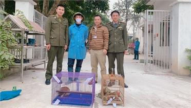 Bắc Giang: Bàn giao ba cá thể động vật rừng quý hiếm về Trung tâm Cứu hộ động vật hoang dã