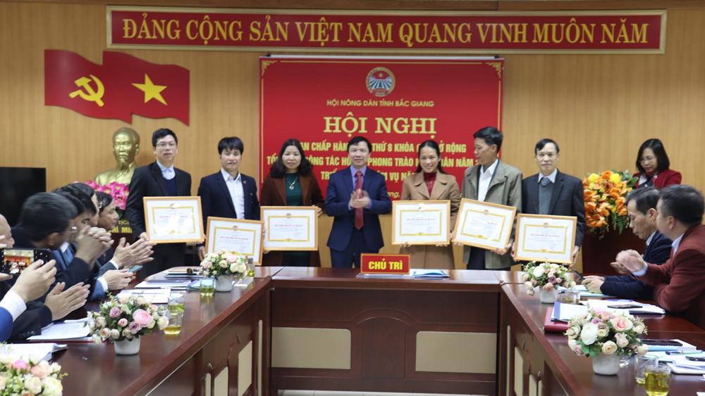 Các tập thể có thành tích xuất sắc trong công tác Hội và phòng trào nông nông được khen thưởng.