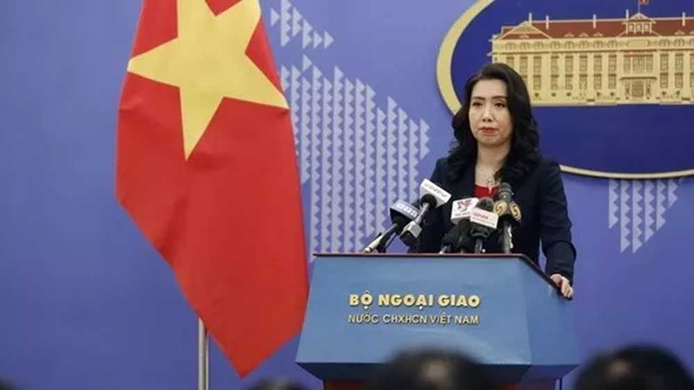 Vietnam reaps many diplomatic achievements: Foreign Ministry spokesperson