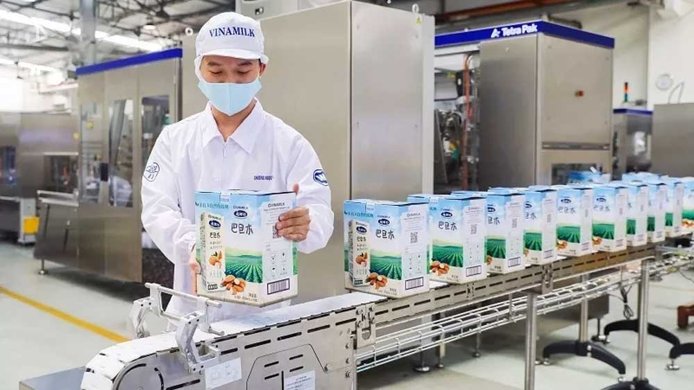 Vinamilk exports, first large batch of milk , China, in 2021