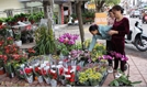 TP Bắc Giang bố trí 34 điểm bán hoa, cây cảnh, hàng hóa phục vụ Tết