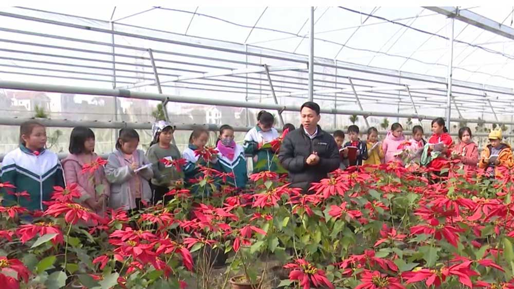 Experiencing high-tech farming models in Bac Giang