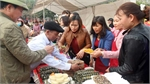 "Bac Giang: ""Van 'chung' cake - Tet of reunion"" festival held"