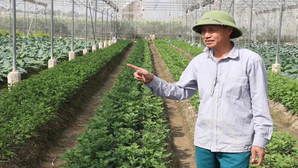 Những giám đốc - trưởng thôn  miệng nói tay làm, trưởng thôn, Bí thư Chi bộ, Bắc Giang