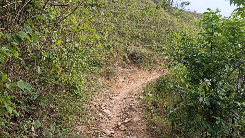 Núi Vạn Cung, đào vàng, công an Lục Ngạn, Bắc Giang