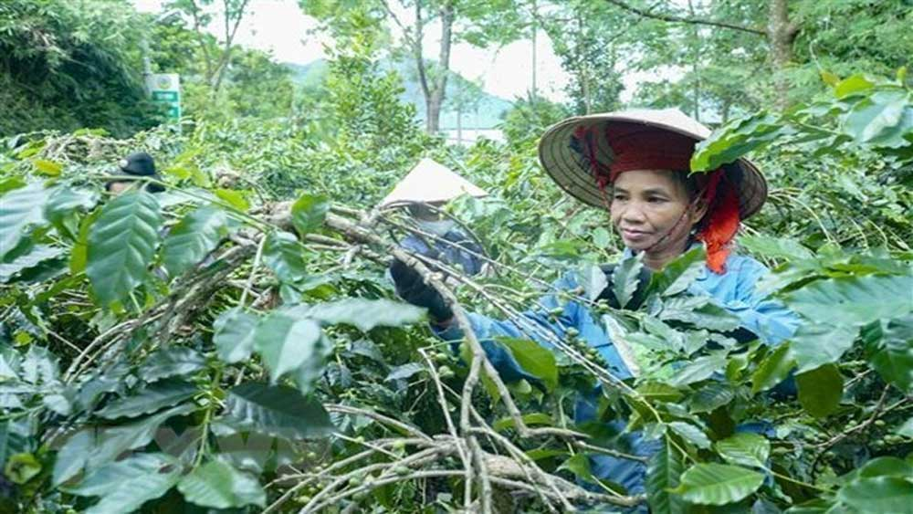 Việt Nam to apply new multidimensional poverty standards
