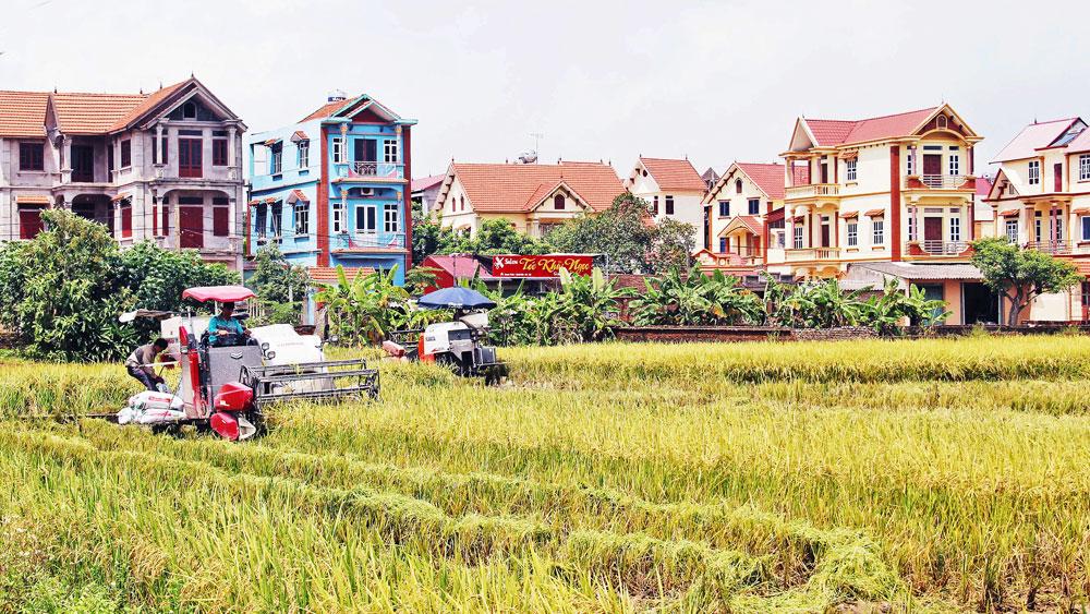xây dựng huyện nông thôn mới, huyện Hiệp Hòa, hệ thống chính trị, Bắc Giang