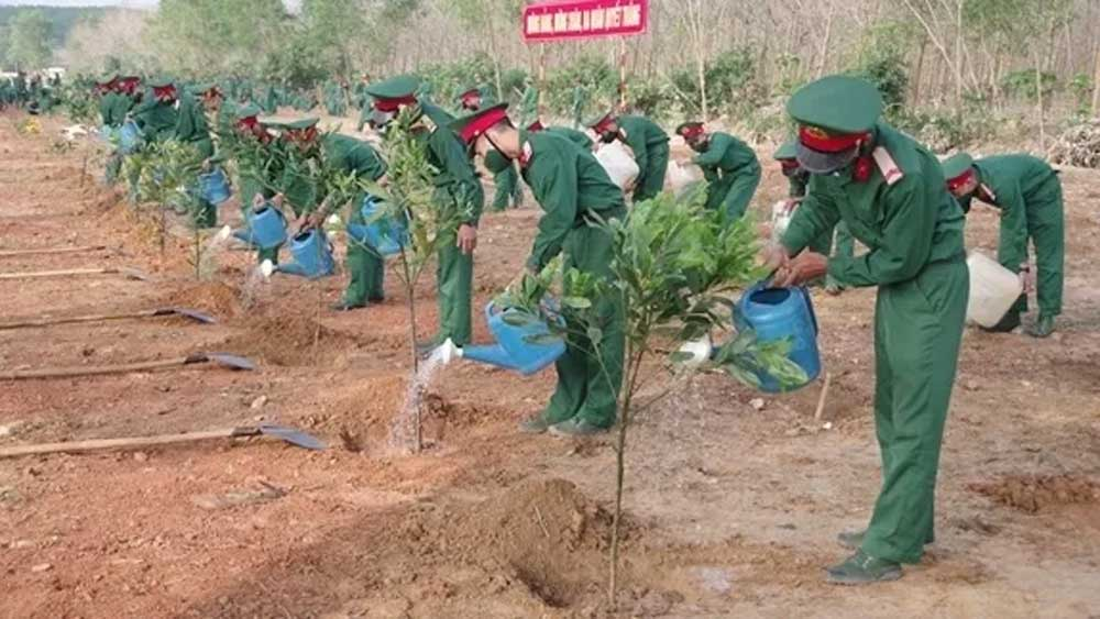 Spring is tree-planting festival