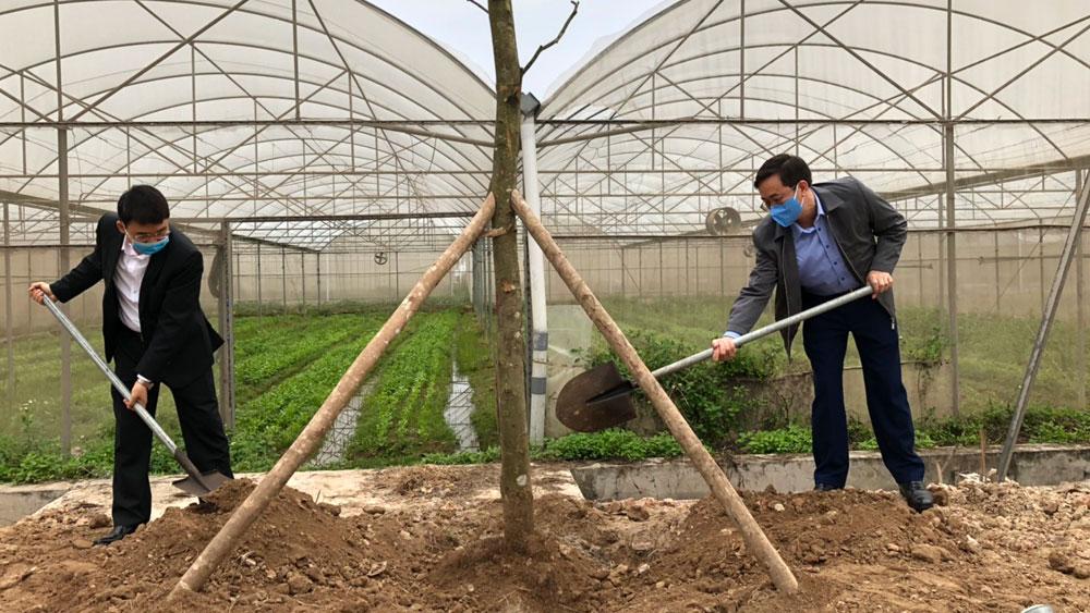 Yên Dũng: Năm 2021 phấn đấu trồng 21.500 cây các loại