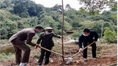 Sơn Động: Phát động Tết trồng cây Xuân Tân Sửu 2021