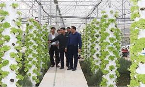 Thôn nông thôn mới kiểu mẫu ở TP Bắc Giang: Diện mạo khang trang, kinh tế khởi sắc