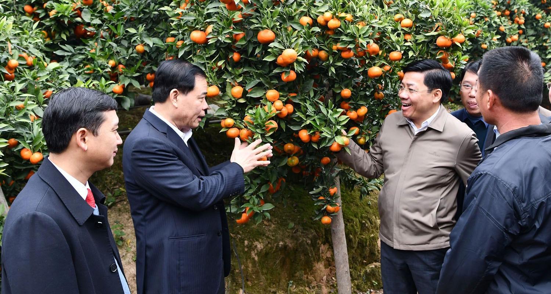 Tháo được nút thắt đất đai, đất nước sẽ phát triển mạnh mẽ hơn, Bí thư Tỉnh ủy Bắc Giang Dương Văn Thái, Bí thư Tỉnh ủy Bắc Giang, Dương Văn Thái