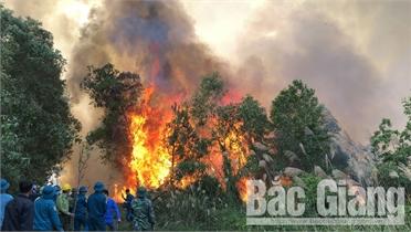 Kiến nghị phòng ngừa vi phạm trong PCCC rừng