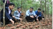 Lingzhi mushroom cultivation in Son Dong: Taking advantage of forest