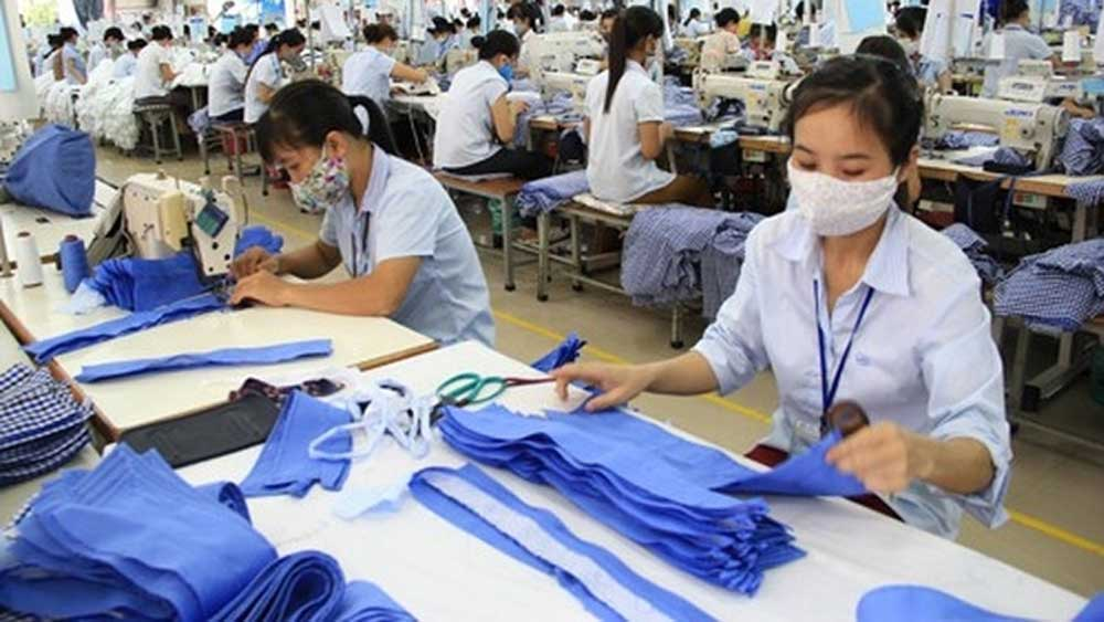 Over 8,000 firms newly established in February