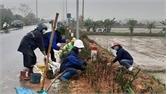 Hội viên phụ nữ Yên Dũng trồng 9 km đường hoa dịp tháng 3