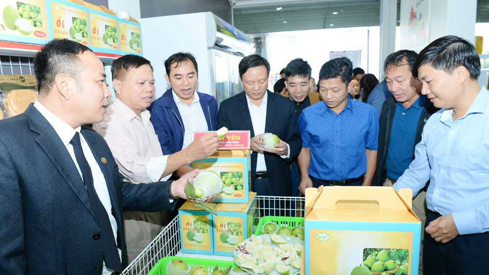 Bac Giang optimizes OCOP sale points