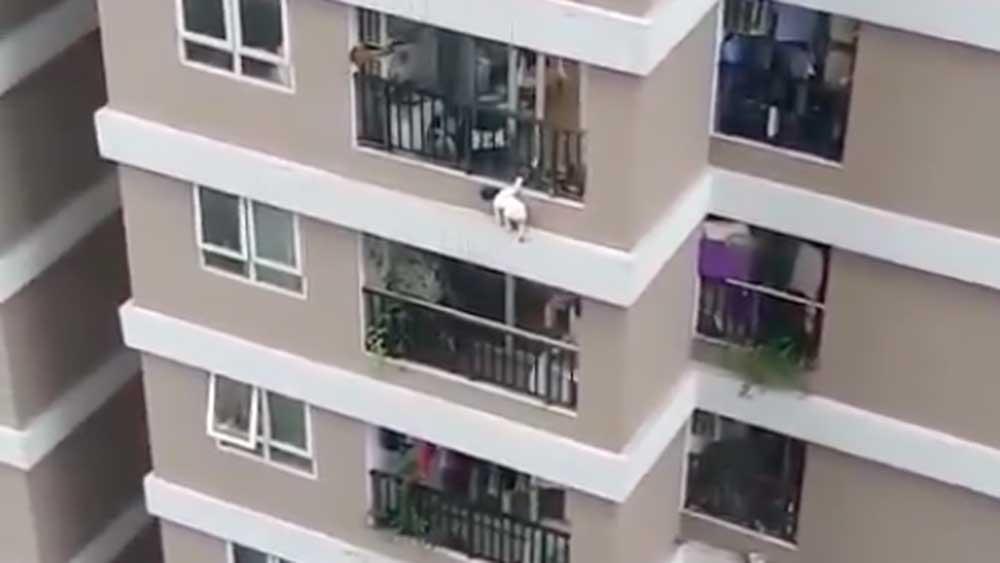 Bé gái rơi từ tầng 12 sắp được xuất viện