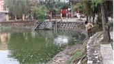 TP Bắc Giang: Ô nhiễm nước hồ Tư Thục làm cá chết hàng loạt