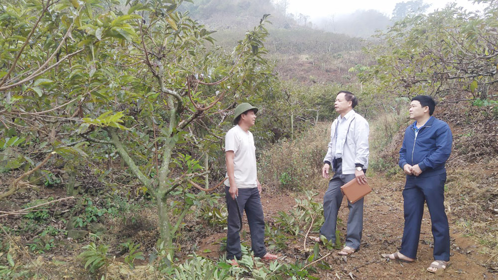 Bắc Giang, phương thức canh tác, dân tộc thiểu số, cây trồng, vật nuôi