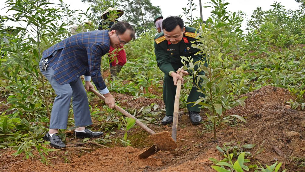 Tân yên, Cựu chiến binh, trồng cây